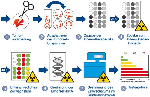 CTR-Test-Verfahren im Labor