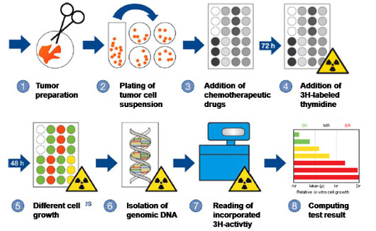 CTR-Test-Procedure in the Laboratory