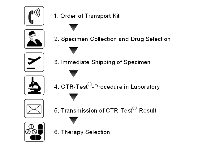Process and Order of the CTR-Test