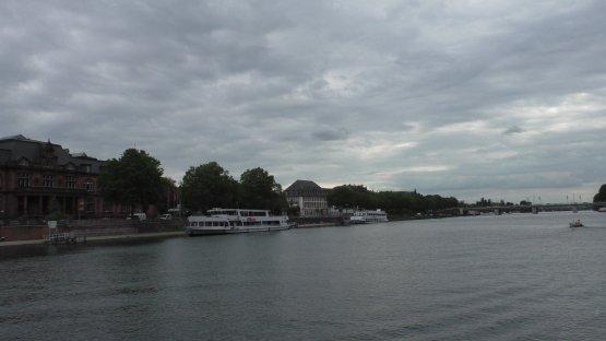 Blick über den Neckar.